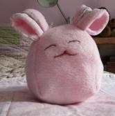 bunnycloseup